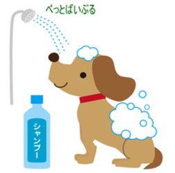 犬をシャンプーする画像1