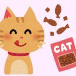 猫の福袋2020年のおすすめ!服やおもちゃ、おやつなどの人気とは?