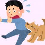 飼いにくい犬ランキング!人気はあるが初心者には難しいとされる種類とは?
