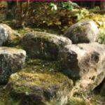 水槽に石を使ったおすすめのレイアウトやおしゃれな配置、インテリアとは?