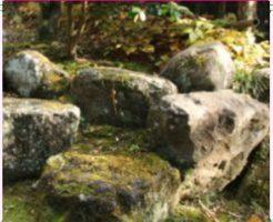 石を使ったレイアウト