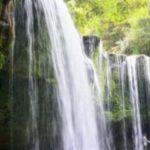水槽に滝を使ったおすすめのレイアウトやおしゃれな配置、インテリアとは?