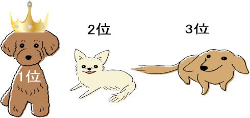 登録件数の多い犬種ベスト3